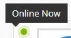 online-now.JPG